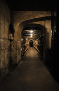 BGT083-197x300 In vino veritas oenotourisme