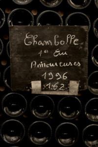 BGT113-200x300 In vino veritas oenotourisme