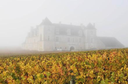 Clos-Vougeotin-the-mist818-440x291 Chefs et Climats en Bourgogne, charité du Bon, du Beau et du Bien