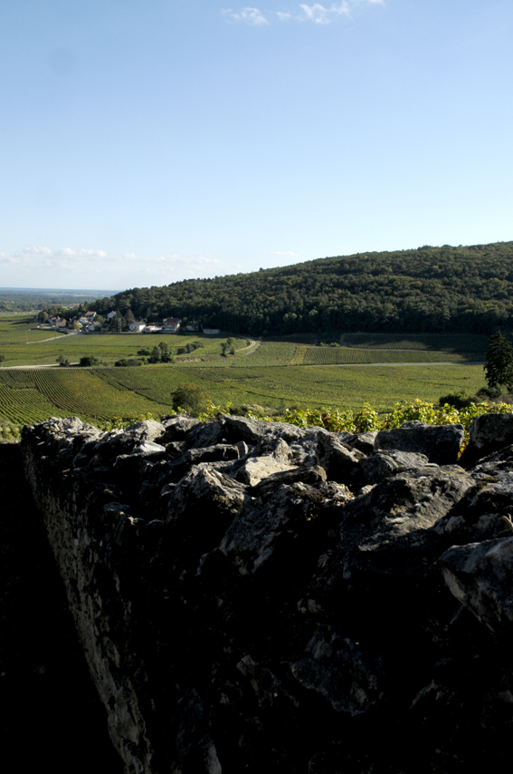 1993 Le bon vin de l'Ivresse oenotourisme Reportages