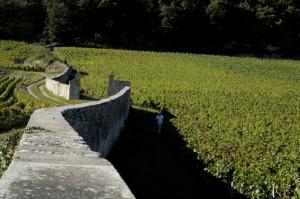 2016-300x199 En Chambertin oenotourisme Reportages