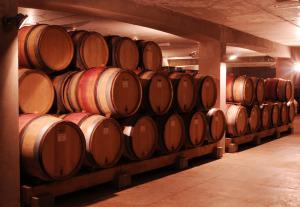 2242-300x207 In vino veritas oenotourisme