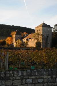 2316-199x300 En Chambertin oenotourisme Reportages