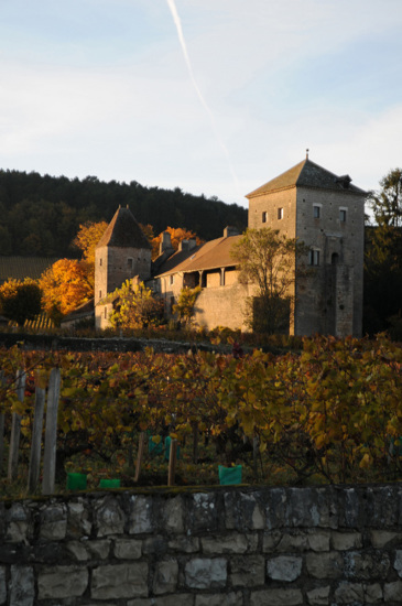 chateau de Gevrey-Chambertin