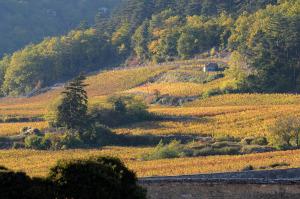2321-300x199 En Chambertin oenotourisme Reportages