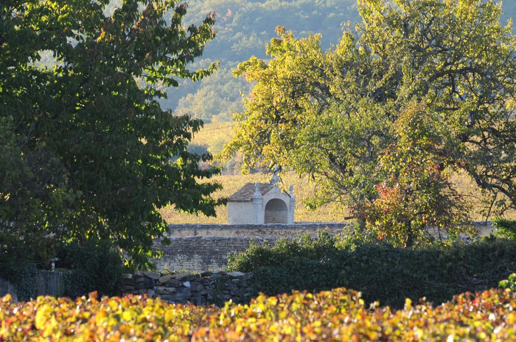 2408-1024x680 Le bon vin de l'Ivresse oenotourisme Reportages