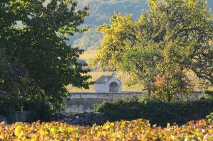 2408-300x199 En Chambertin oenotourisme Reportages