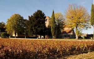 24210-300x189 En Chambertin oenotourisme Reportages