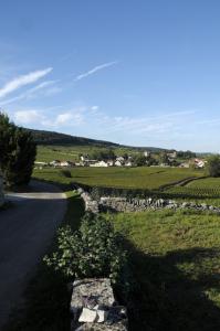 2481-199x300 En Chambertin oenotourisme Reportages