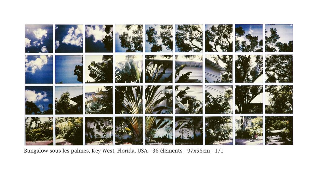 520-1024x548 L'EXPÉRIENCE DE LA FRAGMENTATION ET DE LA RECOMPOSITION D'UN PLAN PHOTOGRAPHIQUE, AU DELÀ DE L'IMAGE FIXE. Non classé