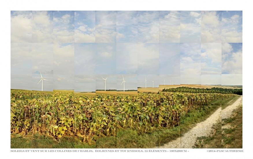 éoliennes sur les collines de Chablis.©Pascal Therme