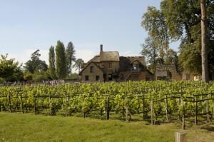 Versailles-jeuxdeau835-300x199 Jardins paysagers, Parcs romanesques voyage