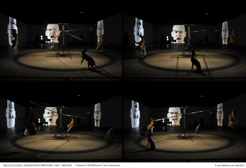 Bruce-Nauman-Fondation-Cartier24-804x550 Reportages photo Expositions, Concerts, Opéra, Festivals...