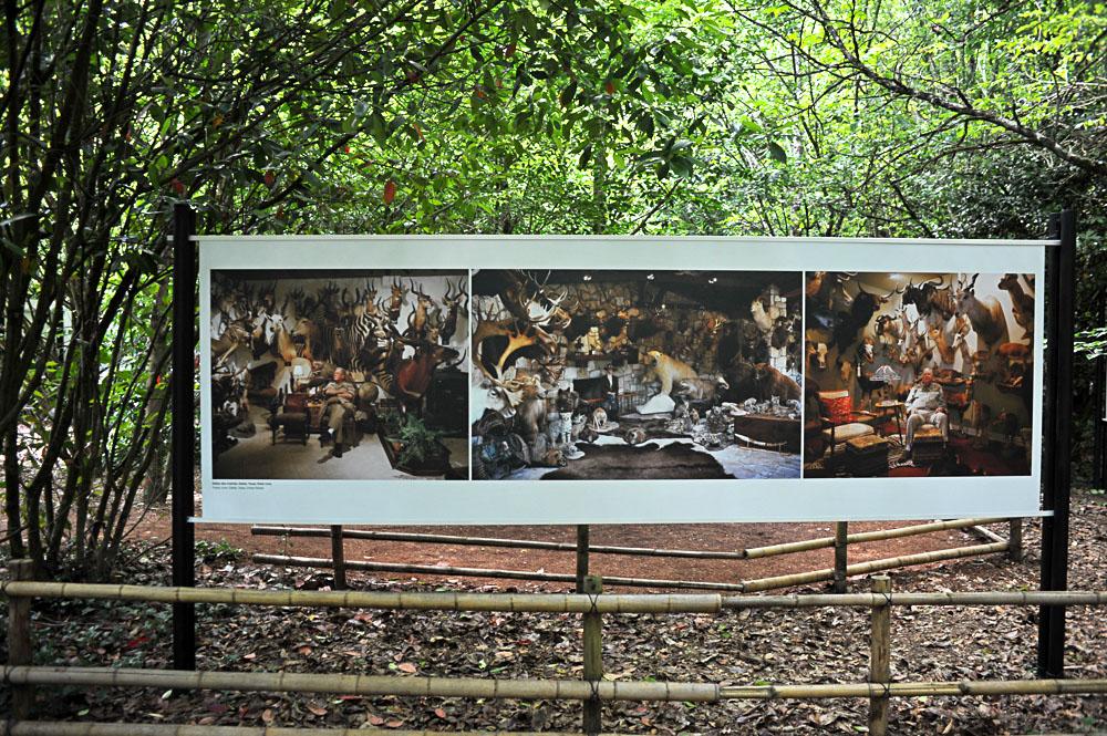 La_Gacilly-CHANCELOR-6 LA GACILLY AU PAS DE COURSE ET POUR AUTANT…. ART