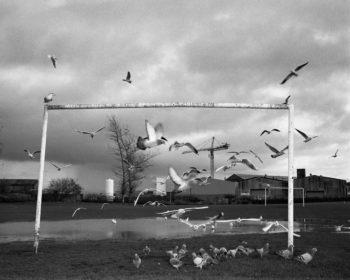 Mark-Neville-Série-22Port-Glasgow22-Coronation-Park-2005-350x280 MERIGNAC PHOTOGRAPHIC FESTIVAL ART