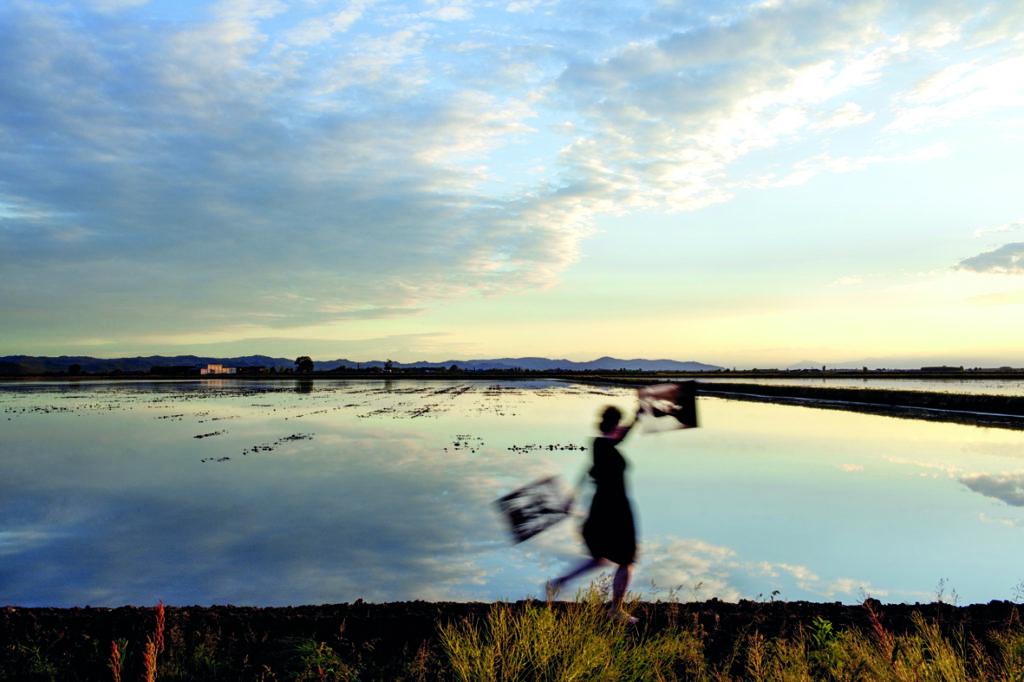 al-crepuscolo-©Sophie-Zénon-1024x682 Dans le miroir des rizières de Sophie Zénon ART