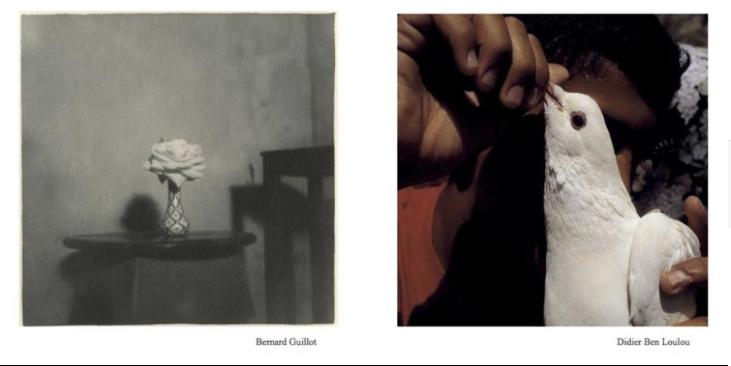 Capture-d'écran-2017-12-21-à-18.48.50 DIDIER BEN LOULOU, BERNARD GUILLOT A LA GALERIE MALEBRANCHE ART