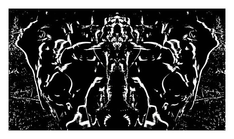 Rosa Mystica ou l'apparition de Venus. étape N°2