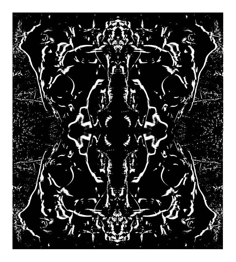 Rosa Mystica ou l'apparition de Venus. étape N°5
