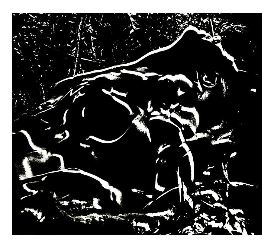 Le Parcours de Venus- Profil paraglyphe - image source