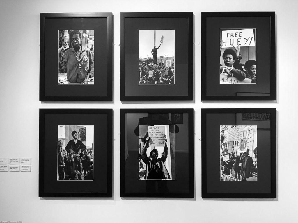 S_Shames-Black_Panthers-18-1024x768 STEPHEN SHAMES POWER TO THE PEOPLE. ART
