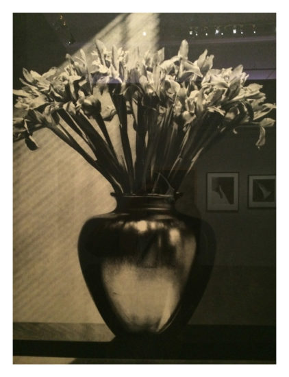 ROBERT_MAPPLETHORPE, expo Grand Palais
