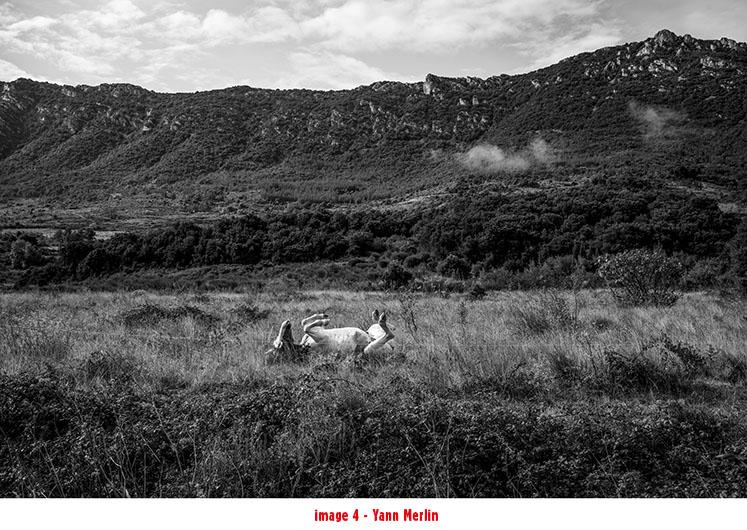 Azimut-U_Yann-Merlin_Tendance-Floue-3 PHOTOGRAPHIE, LE TEMPS NÉCESSAIRE. ART PHOTOGRAPHIE