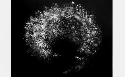 Fleurs de mémoire-Katherine Rey - Cerveau 1 - 2011 -Huile sur toile - 46 x 38