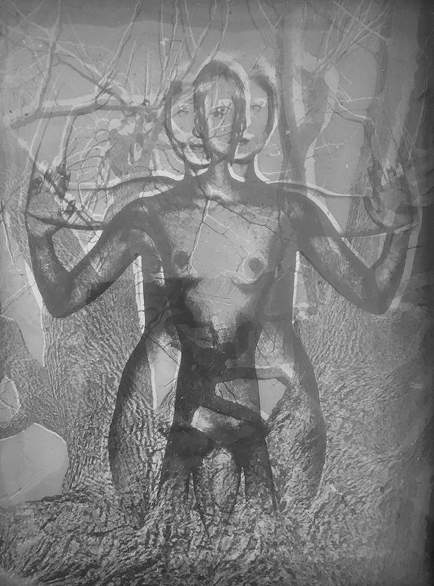 Collection-Regard_Wolff_translusent_positiv-negativ ÉLOGE DE LA LENTEUR AUX PROMENADES PHOTOGRAPHIQUES DE VENDÔME. ART PHOTOGRAPHIE