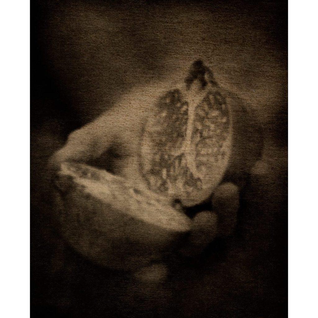 127445366_10157688352772286_8044135849868228945_o-1024x1024 Flore, L'odeur de la nuit était celle du Jasmin. ART PHOTOGRAPHIE