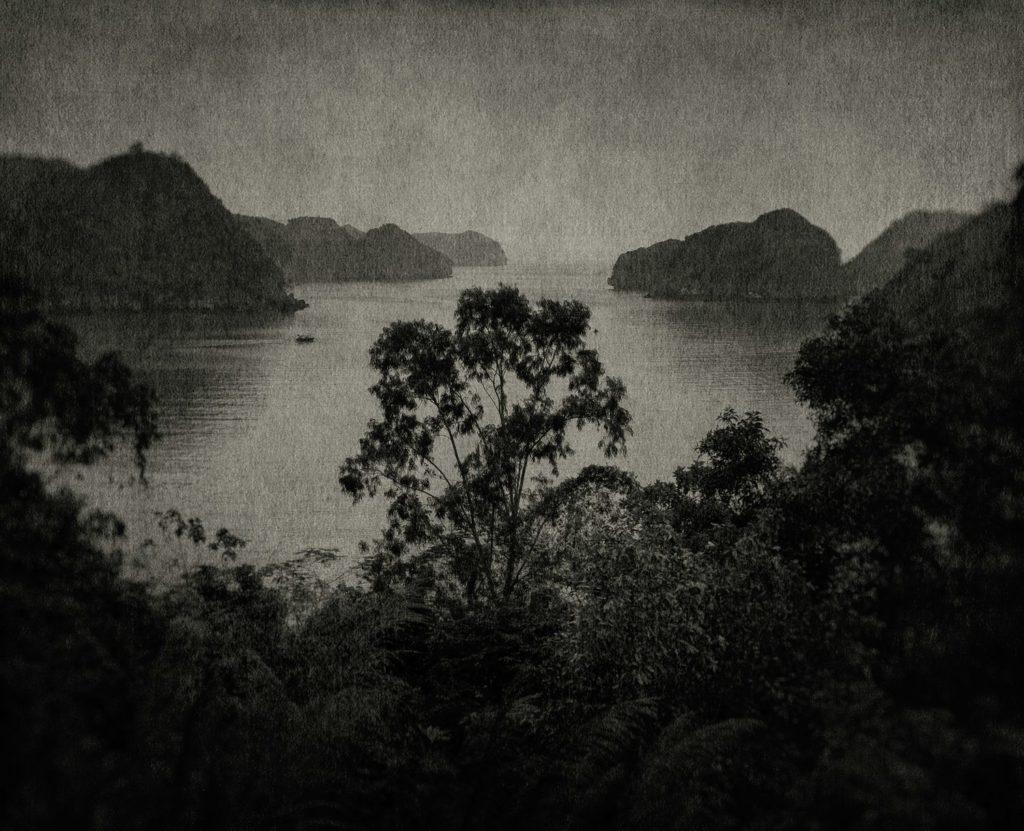 FLORE-4web-1024x831-1 Flore, L'odeur de la nuit était celle du Jasmin. ART PHOTOGRAPHIE