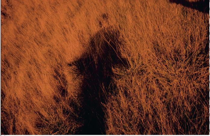 Capture-décran-2021-04-27-à-20.20.59 ARNO BRIGNON, LES DOUTES. ART PHOTOGRAPHIE